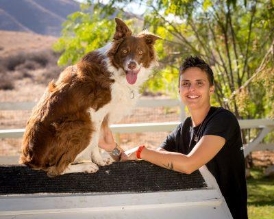 dog with handler